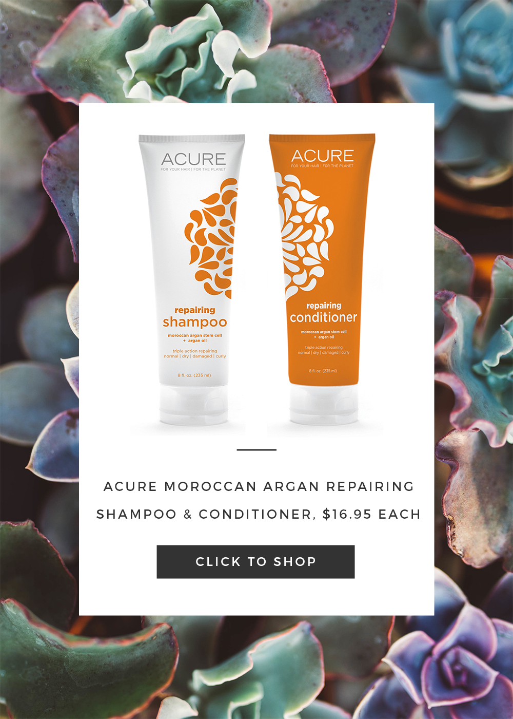 Acure Repairing Shampoo Conditioner